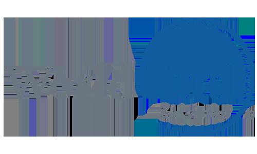 World_Fuel_Services
