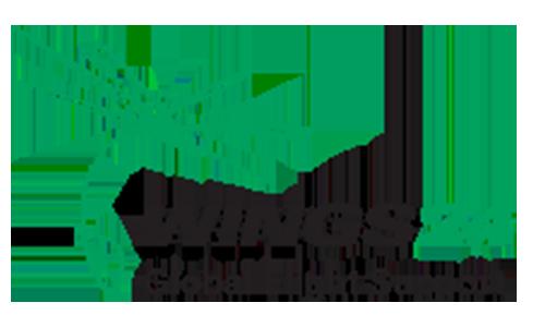 wings24